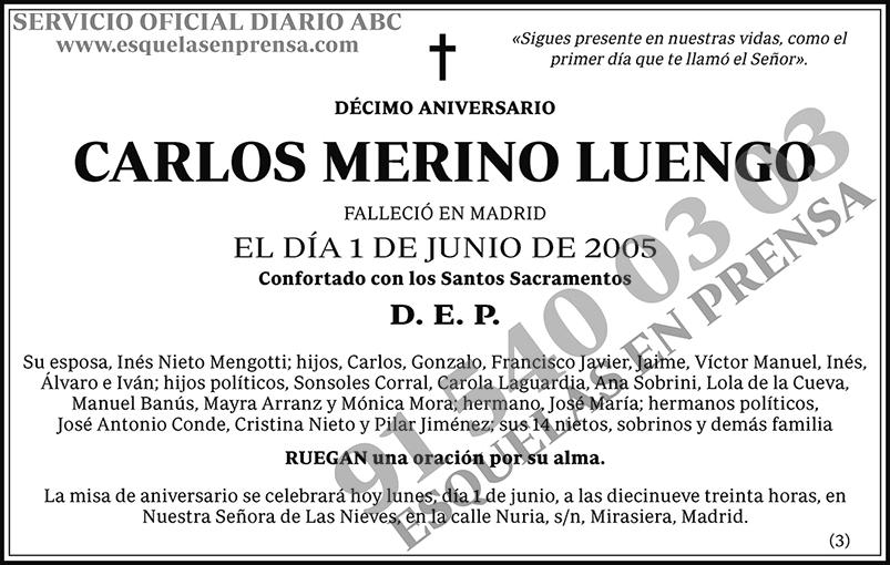 Carlos Merino Luengo